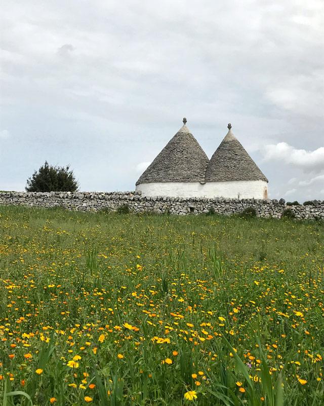 I trulli rendono unico i panorami della Valle d'Itria fiorita in primavera