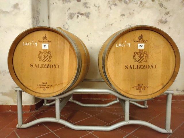 La Cantina Salizzoni produce vino a Calliano vicino in Trentino