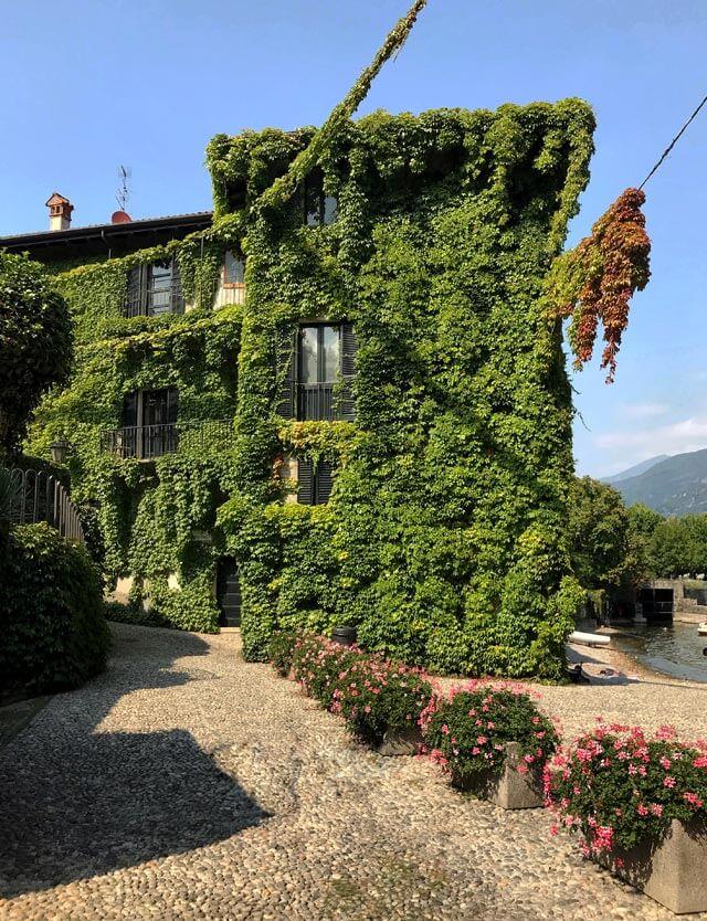 La casa ricoperta d'edera è il simbolo di Pescallo, frazione di Bellagio