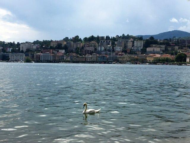 Il Lungolago di Lugano è uno dei posti belli del Ticino