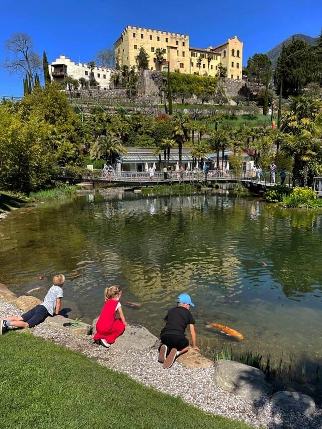 Cosa fare in Trentino Alto Adige coi bambini? Visitare i Giardini Trauttmansdorff