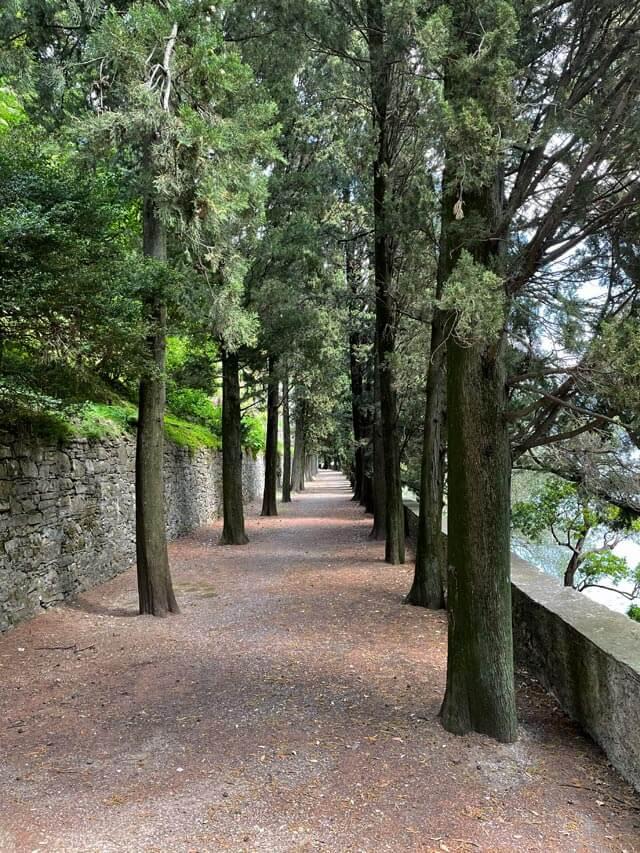 Villa Pizzo a Cernobbio ha un Viale dei Cipressi in giardino