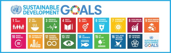The Global Goals for Sustainable Developoment