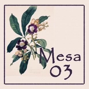 Mesa 03