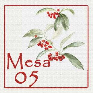 Mesa 05