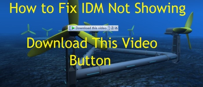 "How to Fix IDM Not Showing ""Download This Video"" Button"