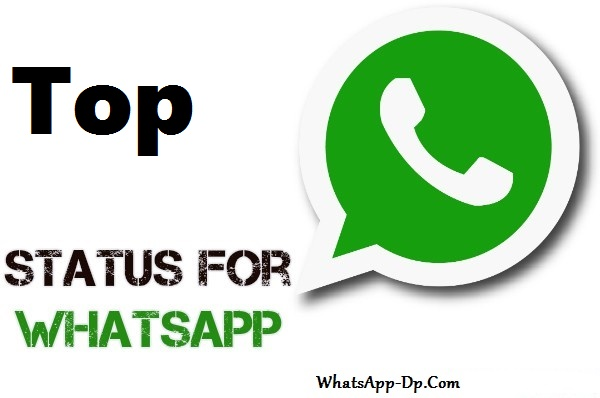 Whatsapp DP Status With Quotes 2018 [Latest Collection] 1