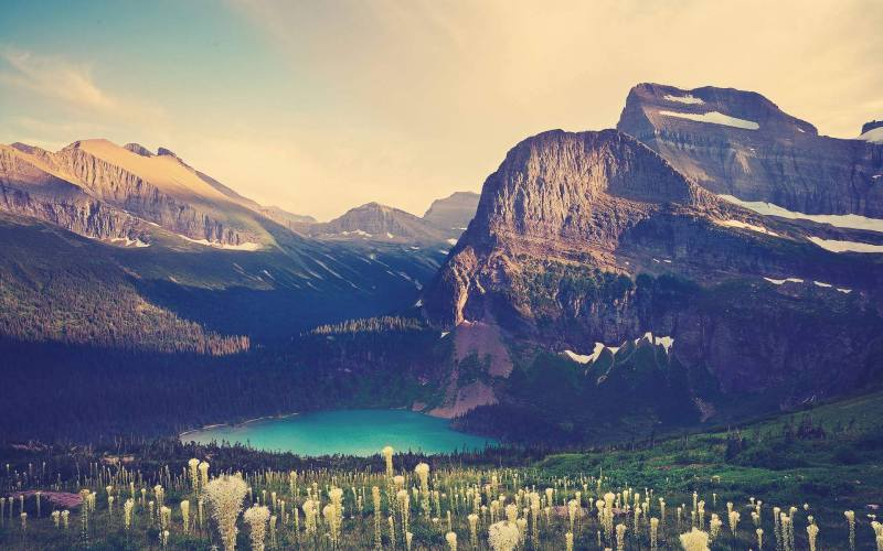 25+ refreshing nature wallpapers Download for your Smartphone 18