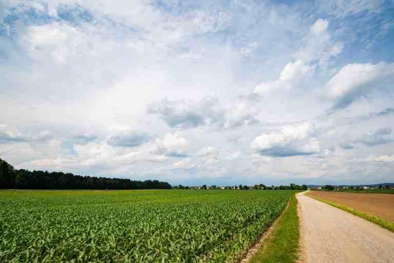 Anwalt für Agrarrecht, Bielefeld | Schlüter, Riedenklau & Kollegen