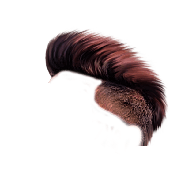 Cb Hair Png Hd Download New Hair Png Zip File Download