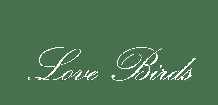 love birds text love birds text