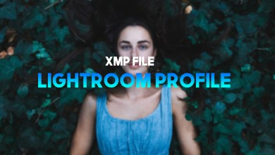 Photo of Best 10 Free Lightroom Mobile  XMP Profile Free Download