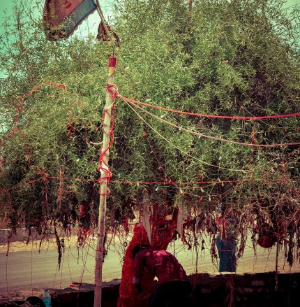 Bullet Baba Temple – Sree is travelling (11)