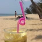 www.sreep.com 20160315_061916 Vietnam, Phu Quoc: Eine Perle im Süden
