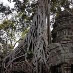 www.sreep.com 20180214_1138211945912665 Cambodia: Tempelanlage Ankor Wat - Kambodschas Wahrzeichen