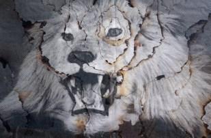 Mask (closeup)