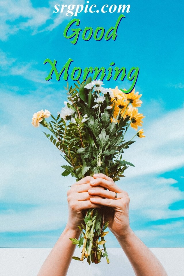 person-holding-positive-morning-quotes