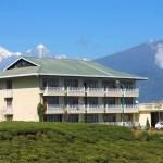Cherry Resort, Temi, Sikkim