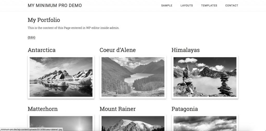 custom-portfolio-page-template-magnific