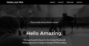 Full width Widget Area inside Home Section 1 in Parallax Pro