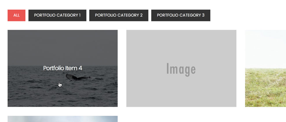 digital-pro-filterable-portfolio-hover