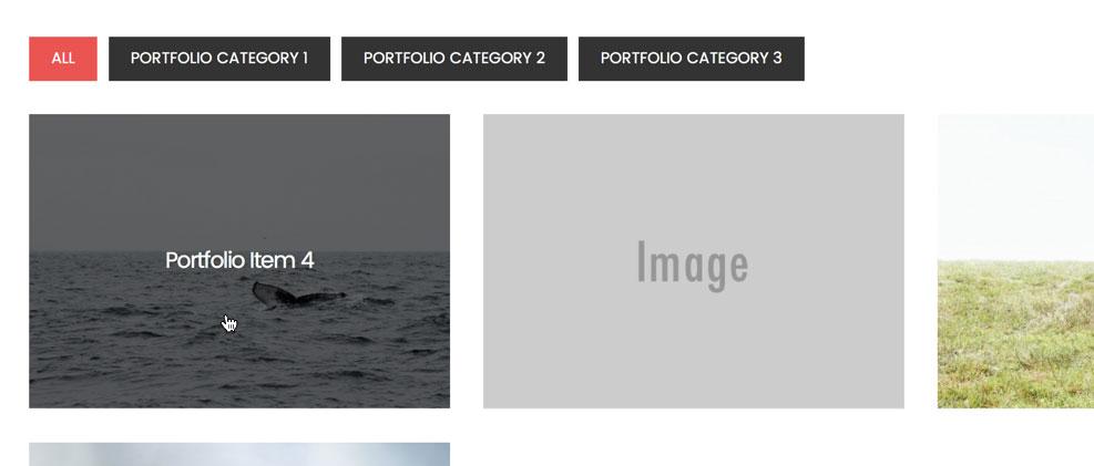 digital-pro-filterable-portfolio-hover