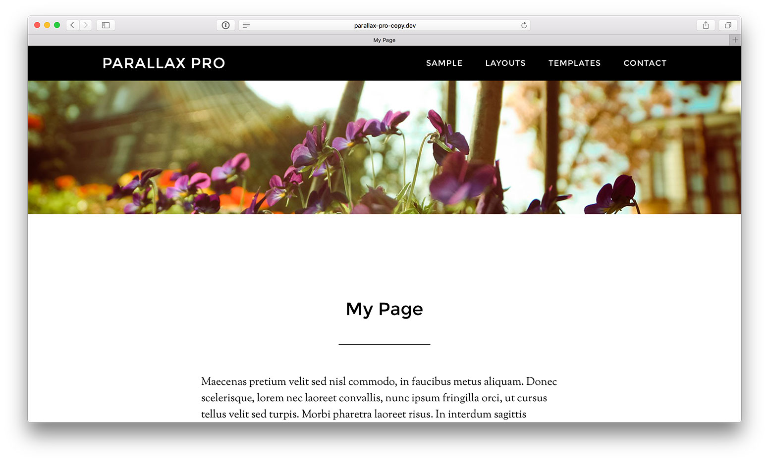 full-width-featured-image-header