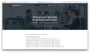 How to display the default header image on singular posts in Business Pro