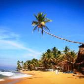Hihhaduwa beach tour guide sri lanka (21)