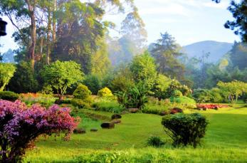 Nuwara eliya sri lanka upcountry island tours good hotels (5)