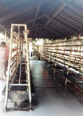 Kelaniya Temple Sri Lanka 11