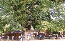 Kelaniya Temple Sri Lanka 22
