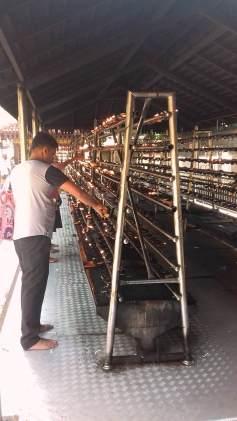 Kelaniya Temple Sri Lanka 25