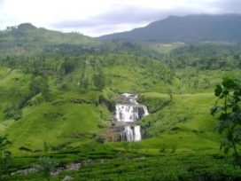 hill country day tour sri lanka Nuwara Eliya