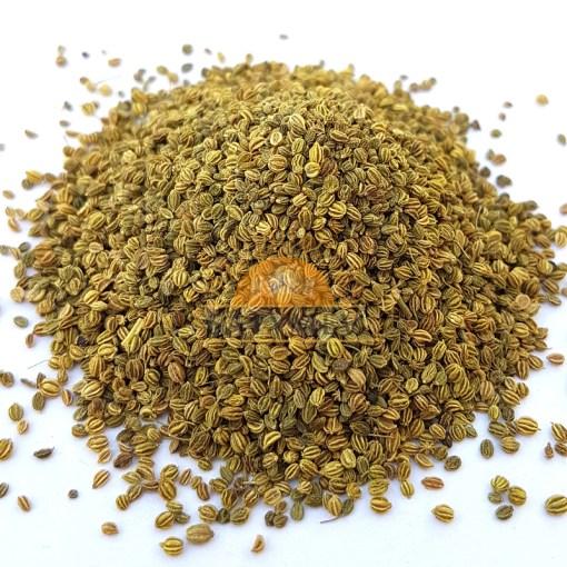 SriSatymev Ajmoda Seeds   Celery Seeds