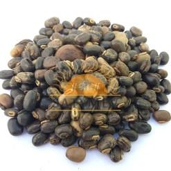 SriSatymev Black Kaunch | Kaunch Black Seeds | Mucuna