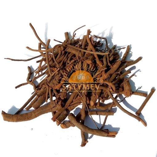 SriSatymev Chitrak Mool | Plumbago Zeylanica | Chitrak Roots | Chita