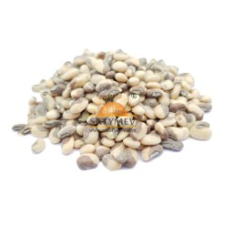 SriSatymev Cowpea Seeds