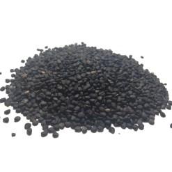 SriSatymev Dhatura Seeds | Satyanashi Seeds