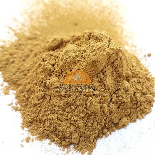 SriSatymev Jamun Seeds Powder | Blackberry