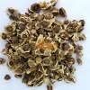 SriSatymev Moringa Seeds | Drumstick