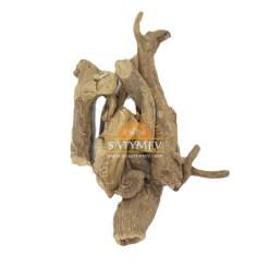 SriSatymev Pushkarmool | Pushker Mool | Pushkar Mool