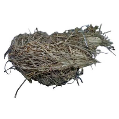 SriSatymev Asgar Grass