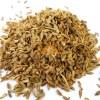 SriSatymev Carrot Seeds