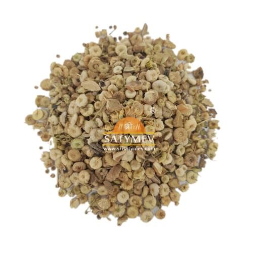 SriSatymev Khubbaji | Common Mashmallow Seeds