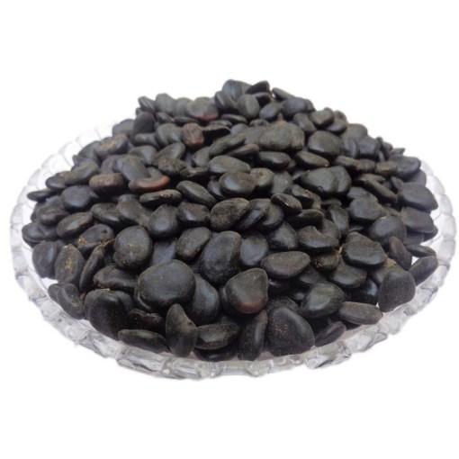 SriSatymev Siris Seeds Black