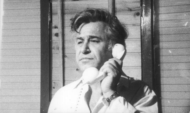 נחום גליקסון יומיים בארץ, 1977