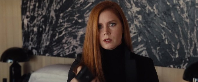 nocturnal-animals3