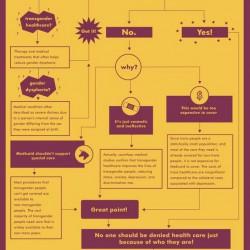 SRLPandGLAAD Medicaid infographic