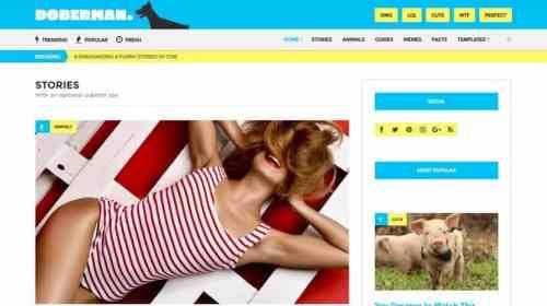Wordpress Premium Themes Free Download | Srmehranclub